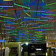 Néons Multicolores